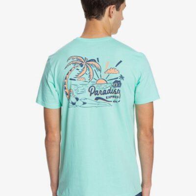 Camiseta Hombre QUIKSILVER manga corta Another Escape CABBAGE (gea0) Ref. EQYZT06330 azul paradise playa
