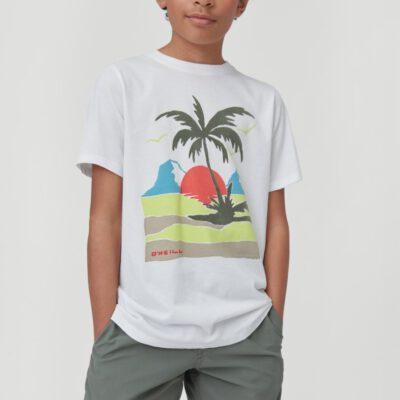 Camiseta O'NEILL manga corta niño surfera PALM SHORTSLEEVE T-SHIRT Powder white Ref. 1A2478 blanca palmera