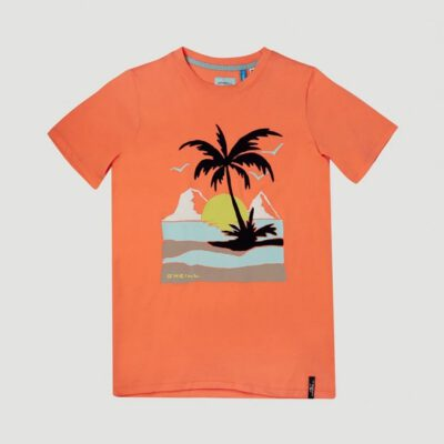 Camiseta O'NEILL manga corta niño surfera PALM SHORTSLEEVE T-SHIRT Living coral Ref. 1A2478 naranja palmera