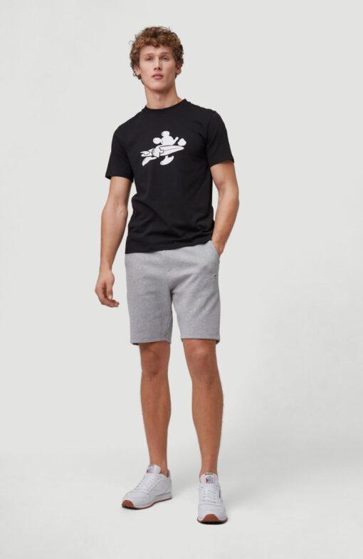 Pantalón chándal O'NEILL corto para hombre TRANSIT SHORTS Silver Melee Ref. 1A2525 gris claro