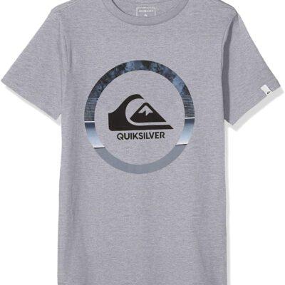 Camiseta QUIKSILVER manga corta niño Classic snake dreams (sgrh) ref EQBZT04066 gris claro